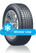Toyo Snow Proxes S942 (Winter Tyre)